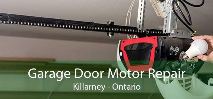 Garage Door Motor Repair Killarney - Ontario