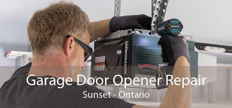 Garage Door Opener Repair Sunset - Ontario