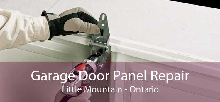 Garage Door Panel Repair Little Mountain - Ontario