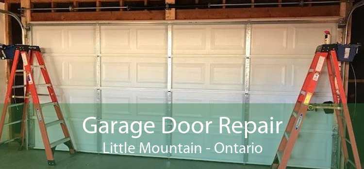 Garage Door Repair Little Mountain - Ontario