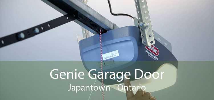 Genie Garage Door Japantown - Ontario