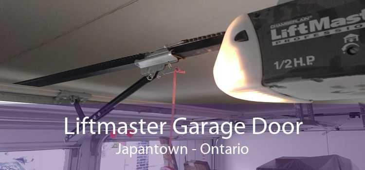 Liftmaster Garage Door Japantown - Ontario