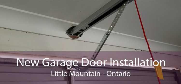 New Garage Door Installation Little Mountain - Ontario